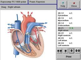 Rayonex Analyse- und Harmonisierungssystem (RAH)