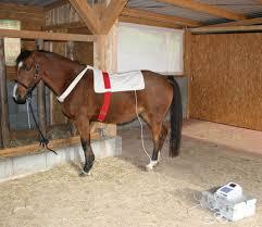 Stoffdetektor: Pferdedecke mit Tasche